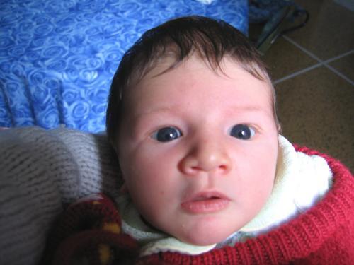 2008-01-GenMarzoMaia